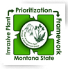 Invasive Plant Prioritization Framework